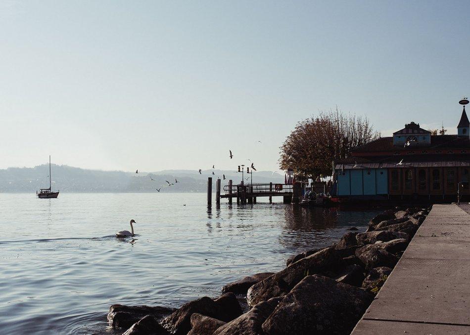 Stäfa am Zürichsee, Hafen